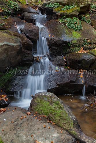 Parque Natural de #Gorbeia #DePaseoConLarri #Flickr      -1470
