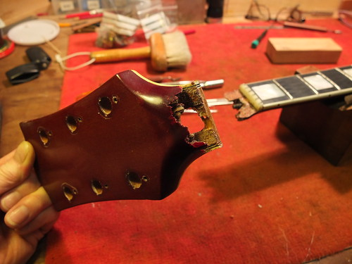 Headstock back | by grahamparkerluthier