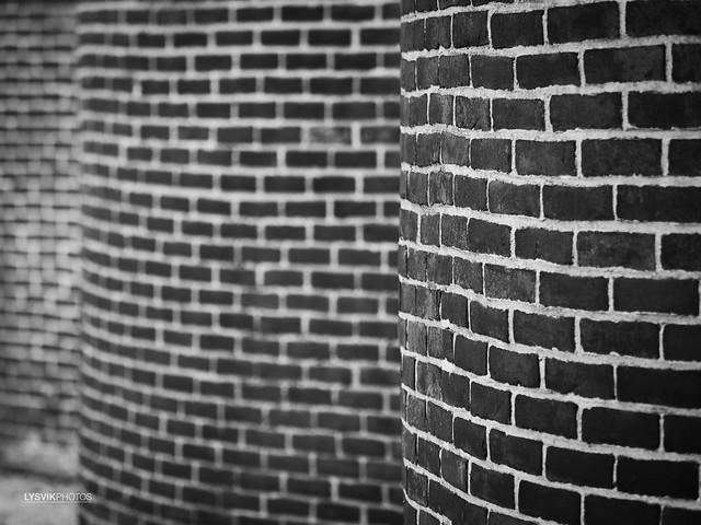 Snake Wall