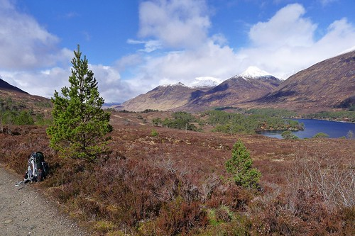 A pause in Glen Affric | by Nick Bramhall