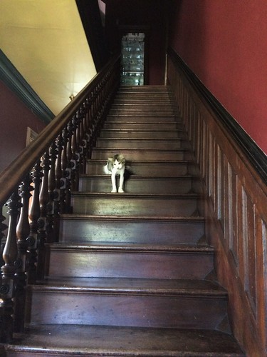 Clark waits on the staircase...