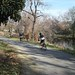 Los Gatos Creek Trail - Healthy Trail