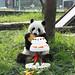 Zhen Zhen 5th Birthday at the Mount Emei Xianzhi Zhujian Ecological Park in Leshan August 3, 2012