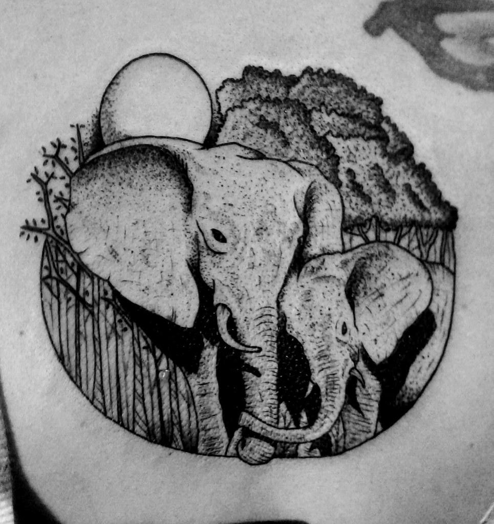 Elefantes Madre E Hijo Bastian Klak Flickr