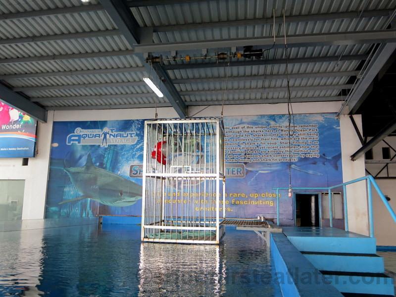 Manila Ocean Park 39 S Shark Encounter Leslie Flickr
