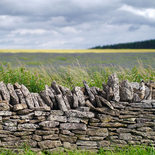 Weathered Wall | by Andrew Lockie