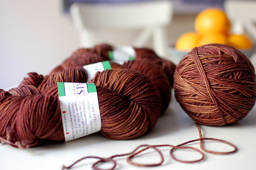Tanis Fiber Arts Green Label- Chestnut | by twoceeveeandme