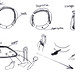 Sketch of Hula Washer by Sang-Soon Lee - Electrolux Design Lab 2012 semi-finalist