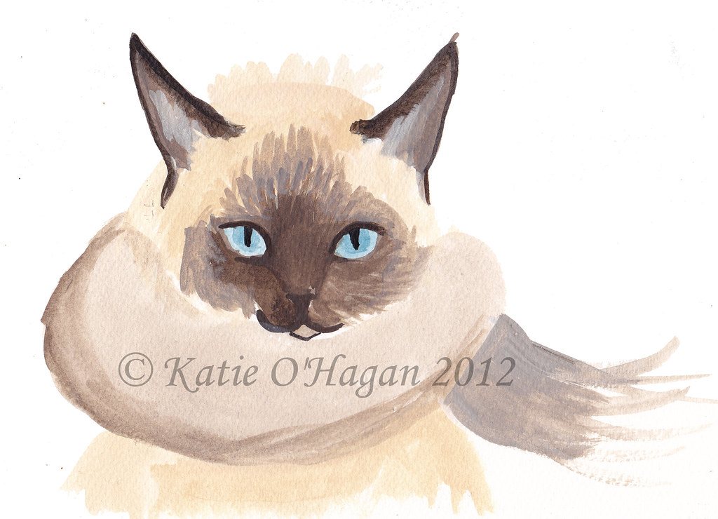 Cat In Scarf Wiggle Gif