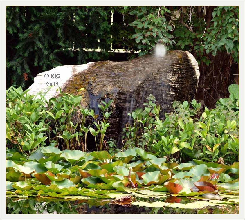 Natur im garten hamilton 2012 08 lange nacht der g rten for Natur im garten