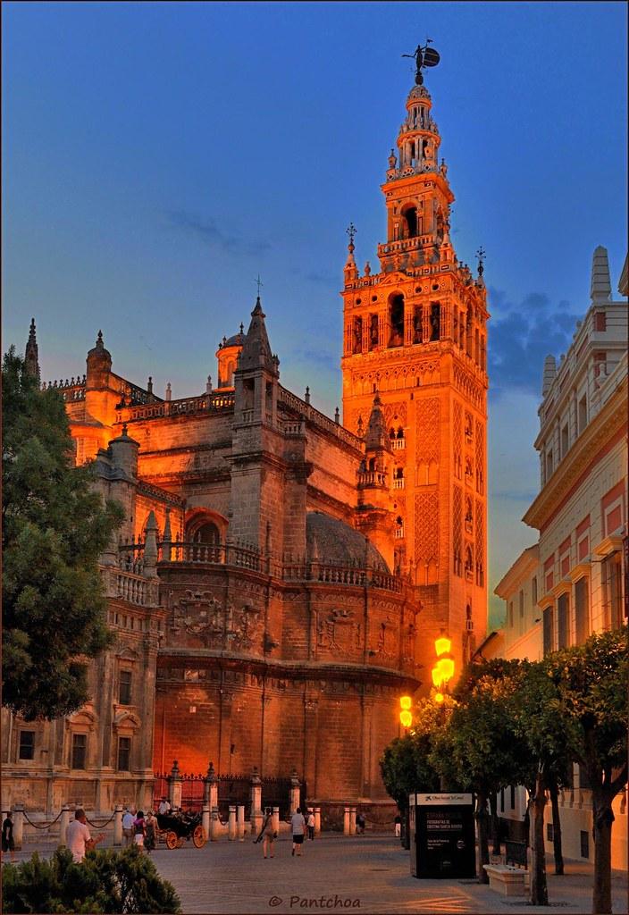 Sevilla : la Giralda al atardecer - 4/4 | La Giralda, view ...
