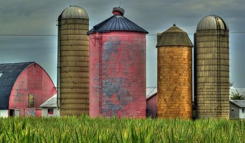 Pink Grain Bin Barn Tile Silo Unusual Color For A