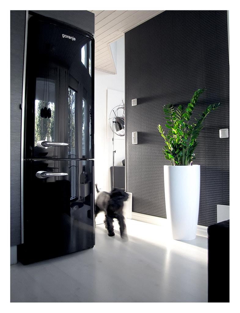 gorenje retro collection i looove my new frigde freezer flickr. Black Bedroom Furniture Sets. Home Design Ideas