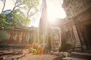 Ta Prohm | by Lisa Bettany {Mostly Lisa}