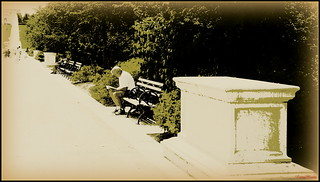 Park Bench | by Antonia Quest Photography/Larry Moore--Thanks<scri
