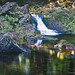 Overlooked Falls - Porcupine Mountains State Park