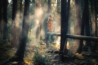 Step Forth | by Elizabeth Gadd