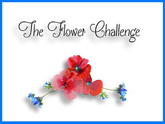 The Flower Challenge - Blog