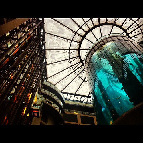 How crazy is this giant aquarium in our hotel lobby? No sharks though. =( | by DClektrik