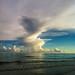 Grandeur - Lido Key, Florida