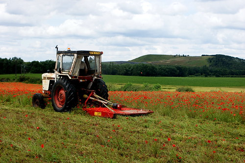 A Tractor ploughing the poppy field | by Kerry711