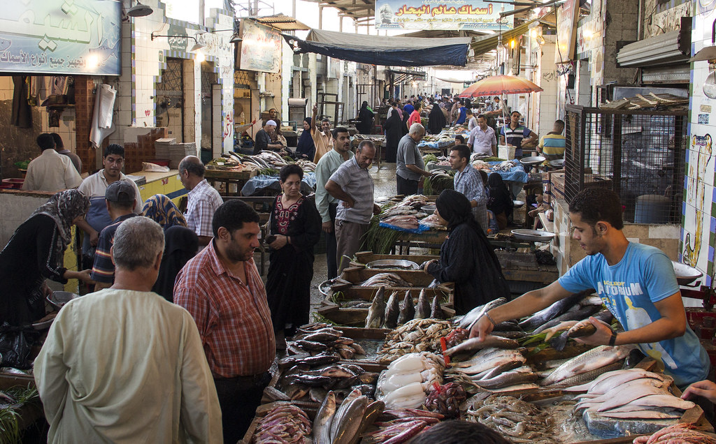 Fish Market Cairo Egypt Photo By Samuel Stacey 2012