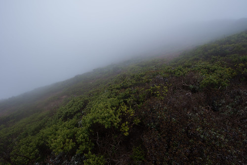 Exposure—from Marin's foggy head. | by kern.justin