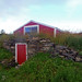 Root Cellar in Summer