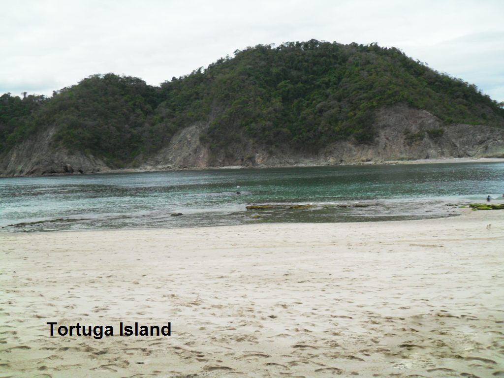 how to get to tortuga island costa rica