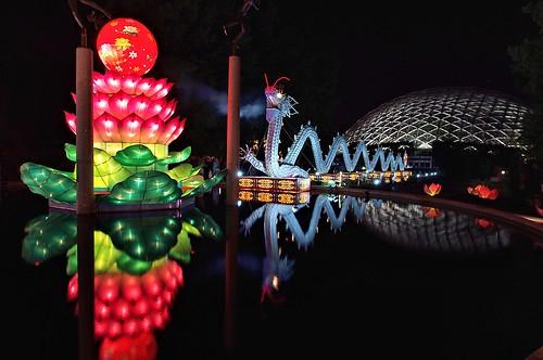 Chinese lantern festival missouri botanical garden flickr Missouri botanical garden lantern festival