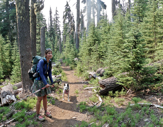Trail Lite Travel Trailer For Sale