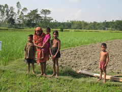 Feeding the future_ Rice is the main staple in Asia_1