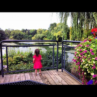 Aerissa enjoying the view at the Milwaukee County Zoo. | by BZalewski