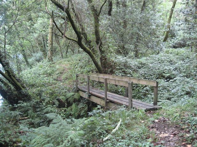 Pasarela de madera en la Ruta dos ríos Vilacoba e San Xusto