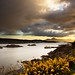Light on the Skye bridge