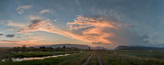 Pitt Meadows #07-13-12-02-c | by Bobby_Ho