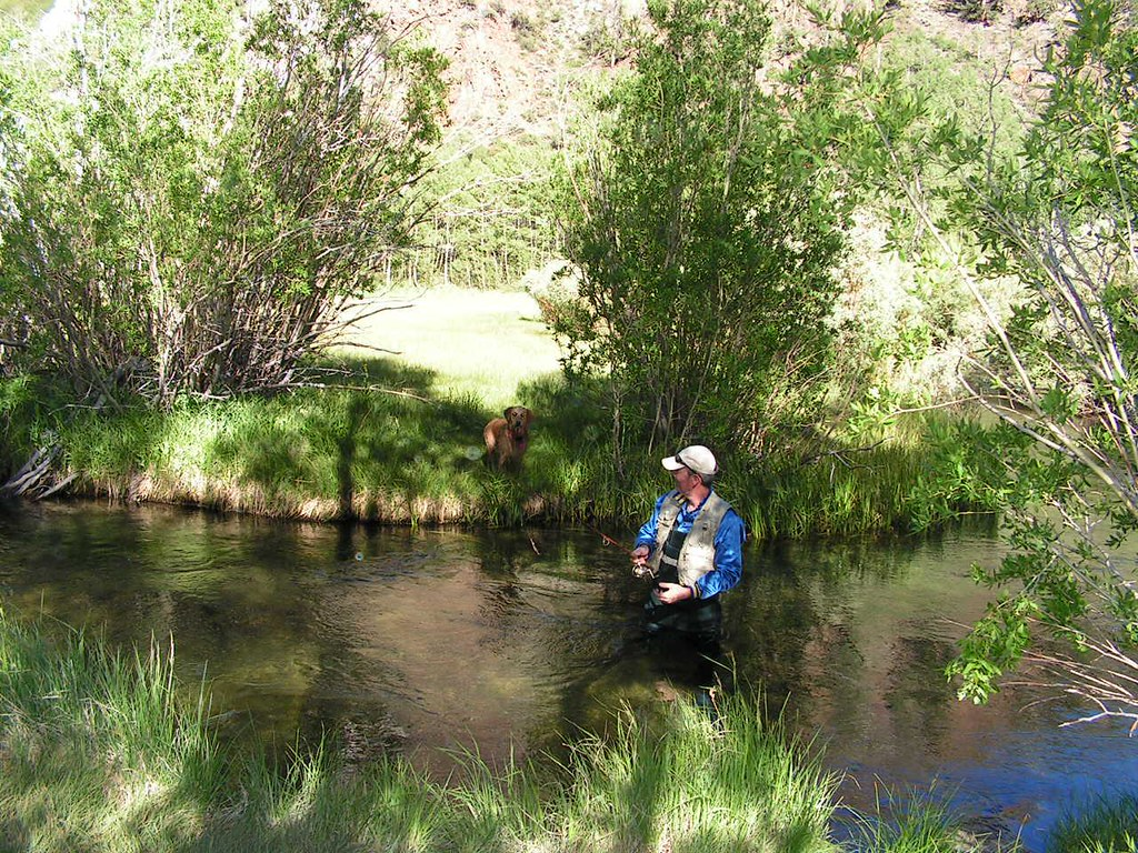a day of fishing on bishop creek sam clark fly fishing fo