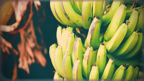 Day 20: Retro Bananas | by samrowlands