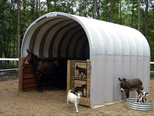 metal-animal-shelter | by SteelMaster Buildings