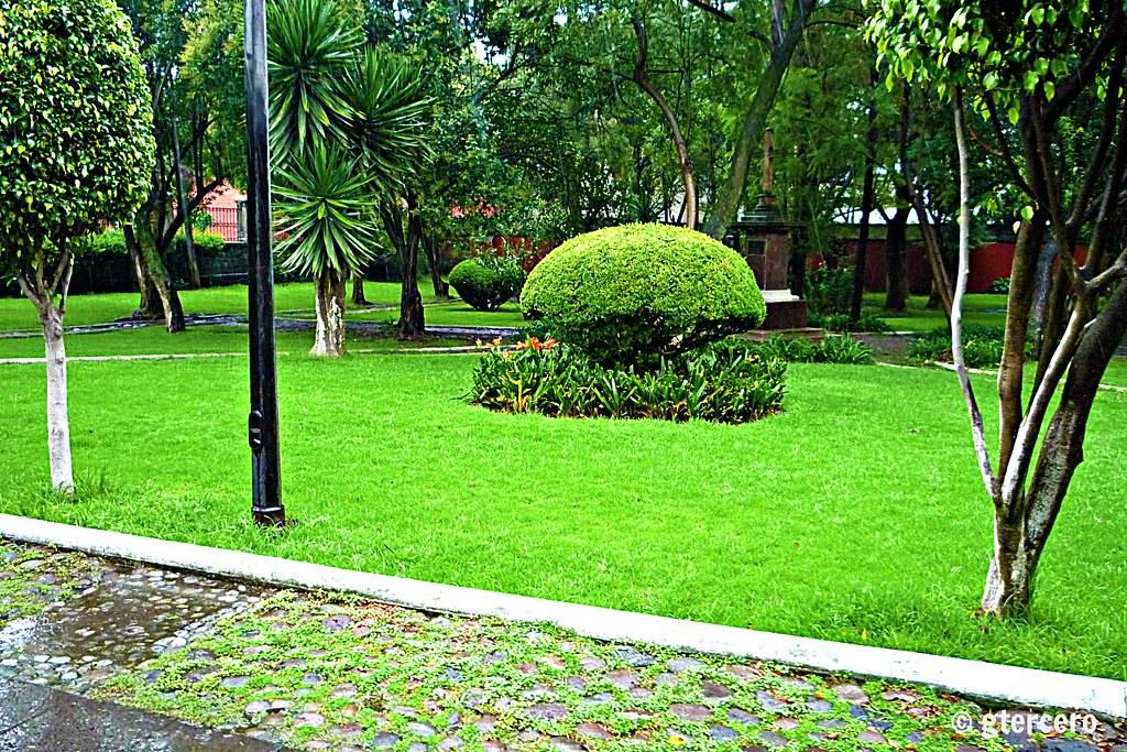 Jardines de la parroquia de santo domingo de guzm n mixc for Celosias de pvc para jardin