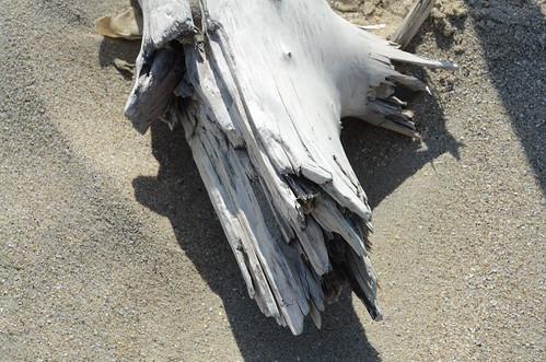 Bois flott bois blanchi par son s jour en mer bpmm for Bois flotte blanchi