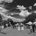 Scenes from the 2012 Oswego Art Fair