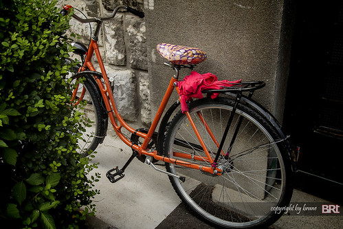 bicycle | by alamond