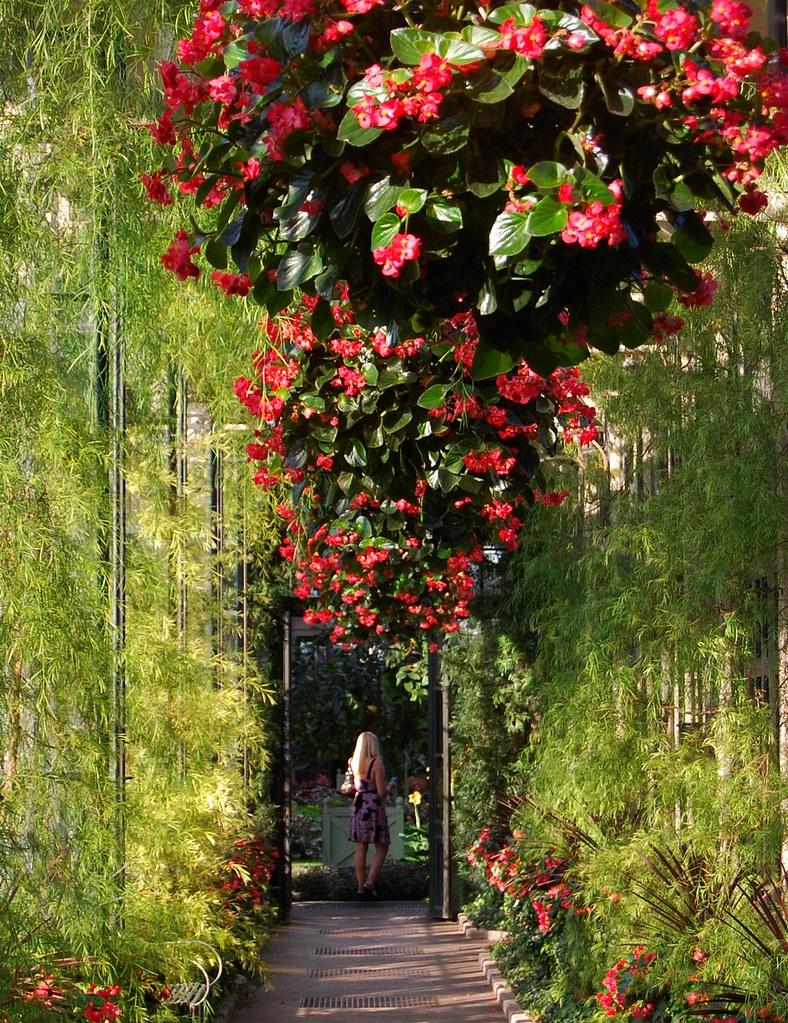 ... An Afternoon At Longwood Gardens Near Philadelphia | By UGArdener
