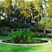 rose-garden-brenizer-tight-large.jpg