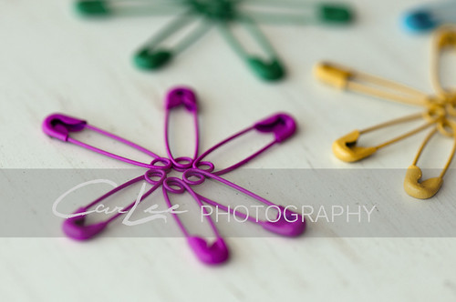 Pinned ~ 3 | by ~ CarLee Photography ~