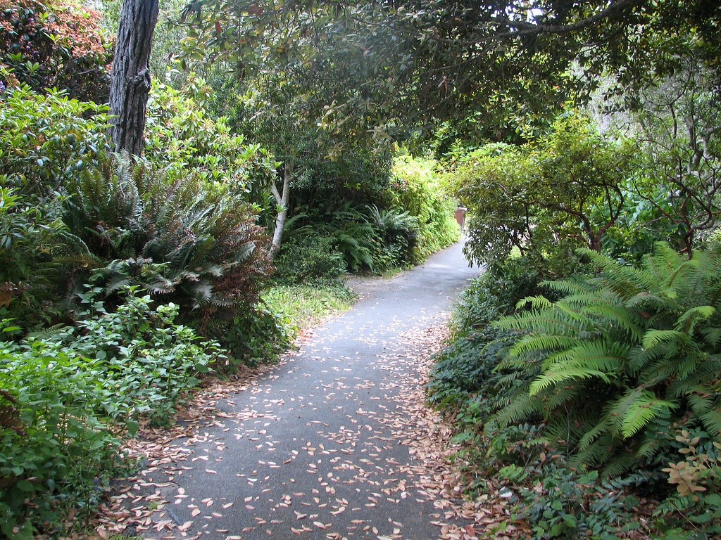 Mendocino Coast Botanical Gardens The Trail That Leads Fro Flickr