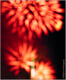 Bokeh_fireworks | by MartinSylvester Photography