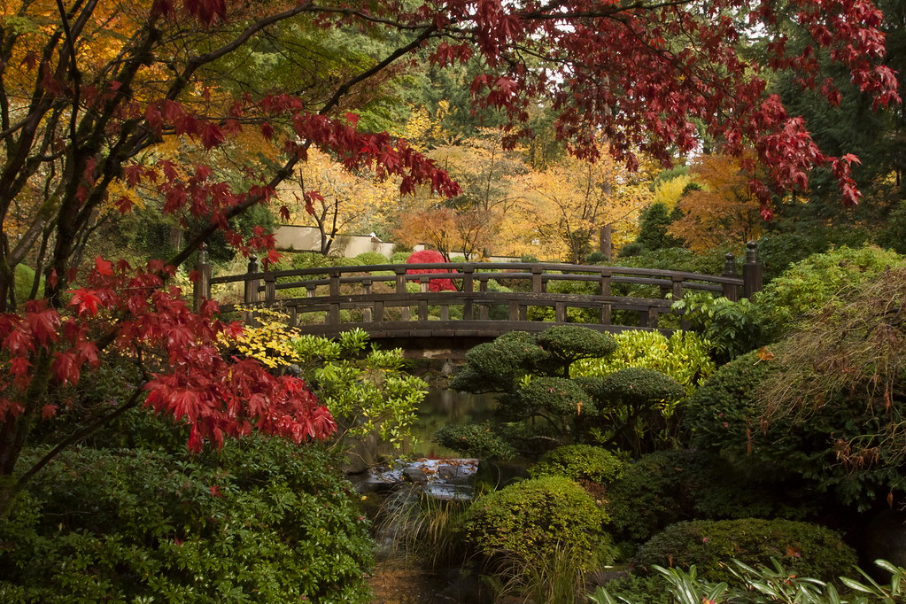 Portland Japanese Garden I 39 Ll Make This My Final Autumn Po Flickr