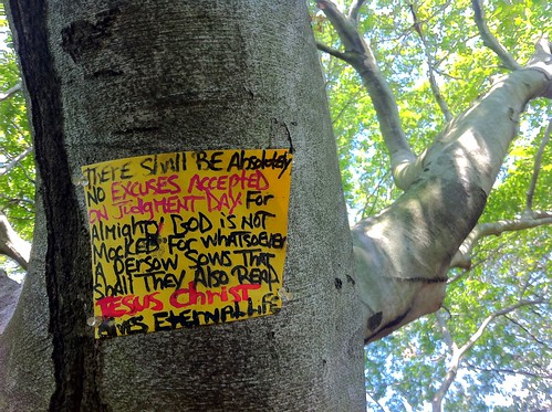 NO EXCUSES. Sign on beech tree, Ferry Point Park, The Bronx. | by finitor